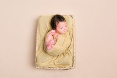Wrapped black-haired baby basket, topview Royalty Free Stock Photo