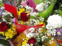 Wrapped bouquets of flowers Royalty Free Stock Photo