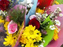 Wrapped bouquets of flowers Stock Image