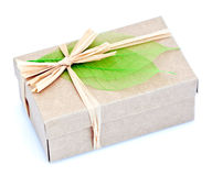 Wrapped box Royalty Free Stock Images