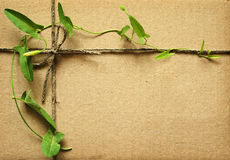 Wrapped box with rope and leaves Royalty Free Stock Photo