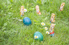 Wrapped Chocolate Bunnies with Easter Eggs in the Grass Royalty Free Stock Photography