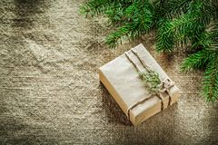 Wrapped gift box thuya pine tree branch on sacking background.  Royalty Free Stock Photography
