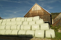 Wrapped Hay. Hay is wrapped into these huge plastic bags which let the hay stay dry Royalty Free Stock Image