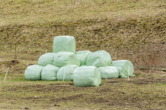 Wrapped hay bales Royalty Free Stock Photo