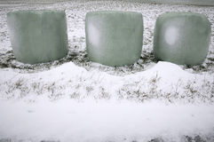 Wrapped hay bales in snow Stock Photos