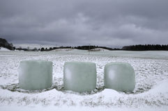 Wrapped hay bales in the snow Royalty Free Stock Photography