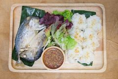 Wrapped mackerel served with fresh vegetable and special sauce Royalty Free Stock Photography