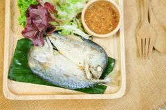 Wrapped mackerel served with fresh vegetable and special sauce Royalty Free Stock Images