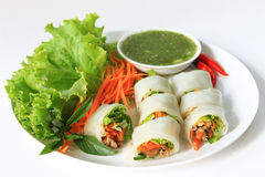 Wrapped Noodle with Vegetables and Meat Royalty Free Stock Photography