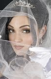 Wrapped in Tulle. A bride with her tulle veil pulled around her face Royalty Free Stock Image