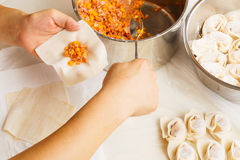 Wrapping of Chinese dumpling Stock Photo