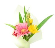 A wrapping flower gift. The flower gift wrapping in memory day Stock Photos