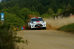 WRC 2011 Rally D'Italia Sardegna - TANAK Royalty Free Stock Photos