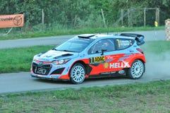 WRC Allemagne 2015 - Thierry Neuville - chopes en grès Image libre de droits