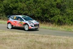 WRC Niemcy 2015 - Hayden Paddon, Panzerplatte - obrazy royalty free