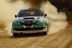 WRC Verzameling Guanajuato Mexico 2013 stock foto's