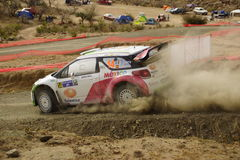 WRC Zlotny Guanajuato Meksyk 2013 Obraz Royalty Free