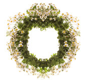 Wreath. Flower wreath isolate on white Royalty Free Stock Photography
