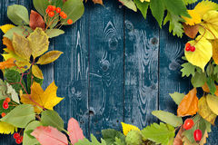 Wreath of autumn leaves on wooden background Royalty Free Stock Photography