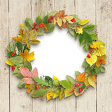 Wreath of autumn leaves on wooden background Stock Image