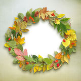 Wreath of autumn leaves on wooden background Royalty Free Stock Image