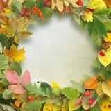Wreath of autumn leaves on wooden background. Autumn background Stock Photo