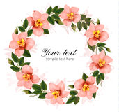 Wreath of beautiful pink orchids. Stock Photo