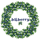Wreath of bilberries. Stock Image