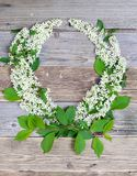 Wreath of bird-cherry blossom branches stock photography