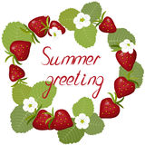 Wreath of blossoming strawberries. Greeting card wreath of blossoming strawberries, flowers and berries with leaves, inscription summer greeting,  on white Royalty Free Stock Photos