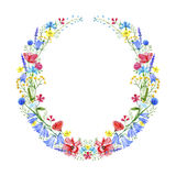 Wreath with bluebell,herbs,lavender,poppy,tansy,clover floral. Royalty Free Stock Photography