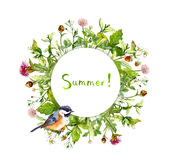 Wreath border frame - summer herbs, meadow flowers, cute bird. Watercolor Stock Photos