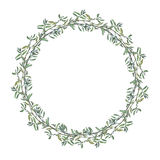 Wreath border frame with summer herbs, meadow flowers. Royalty Free Stock Photos