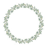 Wreath border frame with summer herbs, meadow flowers. Royalty Free Stock Images