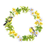 Wreath border - spring flowers, wild herbs, grass. Watercolor circle frame Royalty Free Stock Image