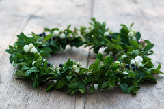 Wreath of boxwood branches Stock Photography
