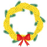Wreath of branches mimosa Royalty Free Stock Photo