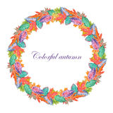 Wreath of bright autumn leaves Royalty Free Stock Image
