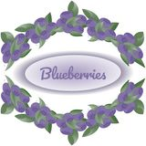Wreath of bushes of blueberries on white background, in the center text Blueberryies. vector illustration
