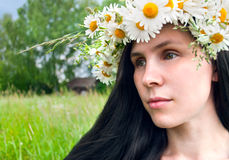 Wreath of chamomile flowers Royalty Free Stock Photo