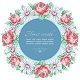 Wreath of chamomile and rose flower, vector floral background, round flower frame, border. Drawn bud pink rose flower and white ch Stock Images