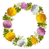 Wreath from chrysanthemum Royalty Free Stock Images