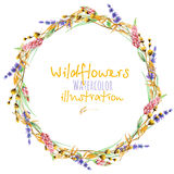 Wreath, circle frame border with yellow dry wildflowers, lupine and lavender flowers Stock Images