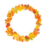 Wreath circle frame made of autumn leaves, wheat and acorns. Fall season background template design. Harvest theme border layout Stock Illustration