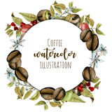 Wreath, circle frame from watercolor coffee branches, flowers and beans at different stages of maturation. Hand painted isolated on a white background stock illustration