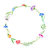 Wreath of a cornflower, bluebell, herbs, tansy, heather floral. Royalty Free Stock Images