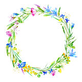 Wreath of a cornflower, bluebell, herbs, tansy, heather floral. Stock Photo