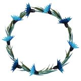 Wreath of cornflowers. Hand drawn watercolor illustration vector illustration