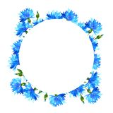 Wreath with cornflowers. Round frame with blue beautiful flowers. Hand drawn watercolor illustration. Isolated on white background vector illustration
